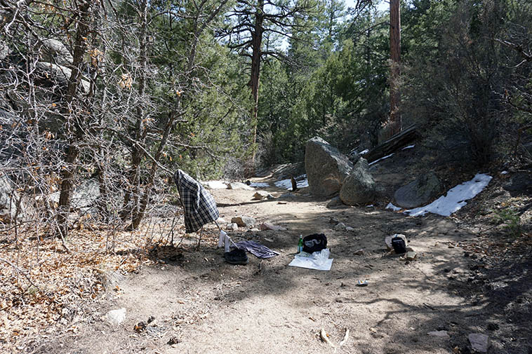 Late lunch in Barefoot Arroyo south of the trail for a change (normally I go up the arroyo about quarter of a mile and sit and lunch and read) ---- I laughed the other day when I came across in a book a photo of John Muir resting in the woods with his shirts drying out hanging in trees! Photo by MW March 30, 2021 ---- Those are Ponderosa and Pinyon