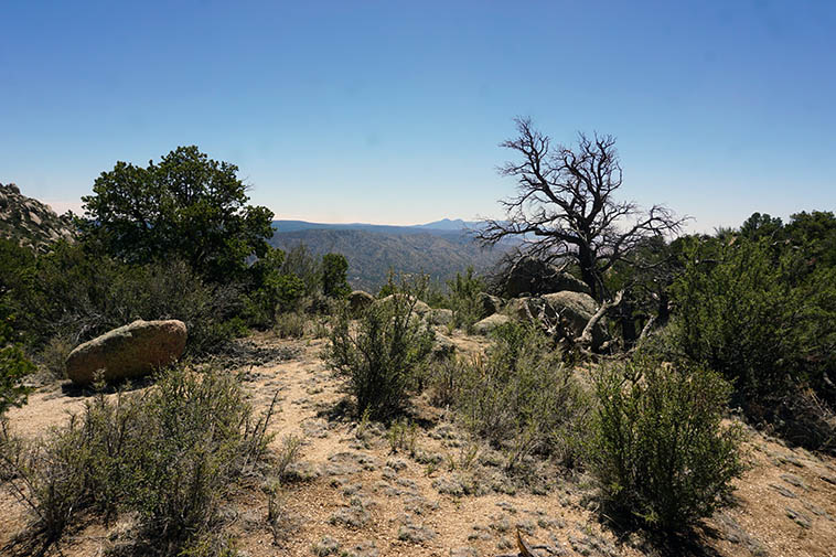 Lunch with view of Monzano Mountains to the south ---- 12:49 Noon elevation around 7500 feet